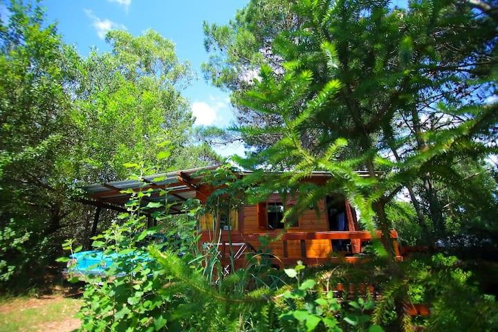 "Pequeña y rustica cabaña concepto ""Tiny House"""