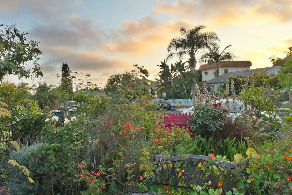If it is a cloudy day, watch for the sunset in the front garden.