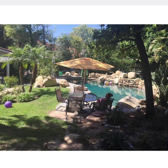 Pool/ backyard