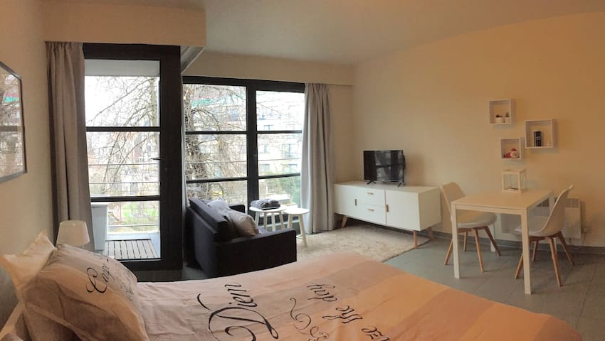 Cosy Studio very quite heart Ghent - Gent - Apartmen