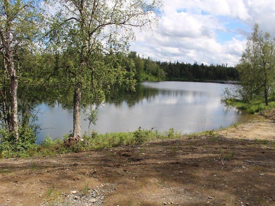 Lake View- Summer