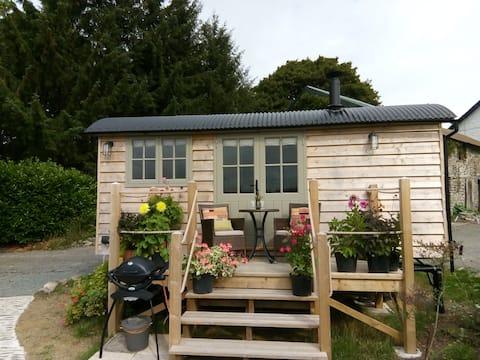 Secluded luxury Shepherd Hut - heart of Mid-Wales