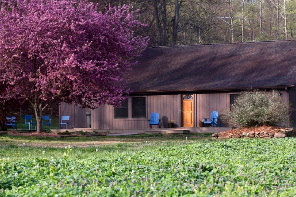 Spring in the Shawnee is full of color. Take it all in at The Loft, a secluded cabin tucked into a 70 acre organic farm that's 15 minutes to restaurants & groceries and just minutes from the wine trail!