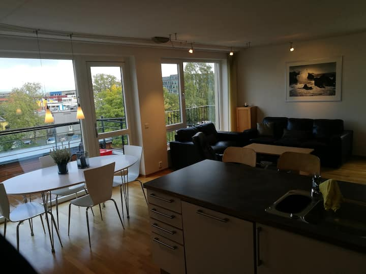 Fully equipped modern penthouse in Trondheim city