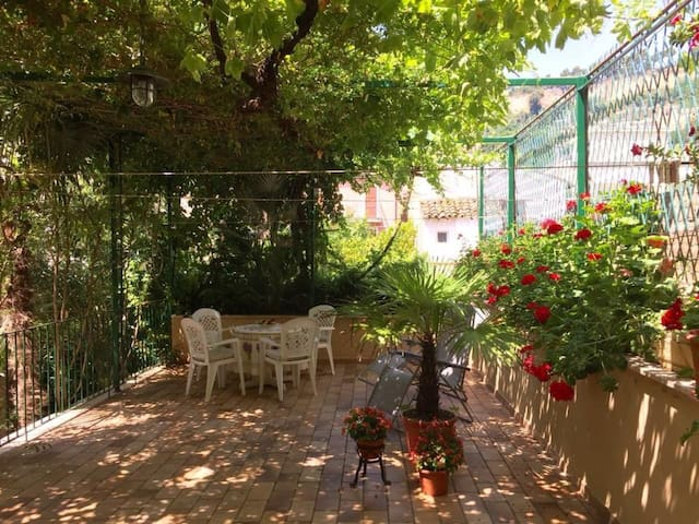 Eating under the bower , at the Villino Talamonti - Grottammare