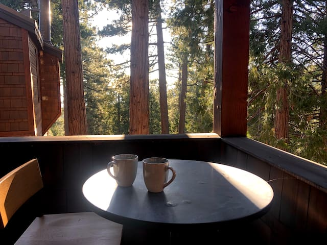Eastern Slope 1BR nestled in the mountains!