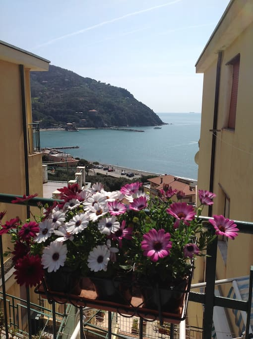 Calipso apartments for rent in levanto liguria italy for Calipso singles
