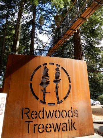 Redwoods Treewalk, MTB and walking trails