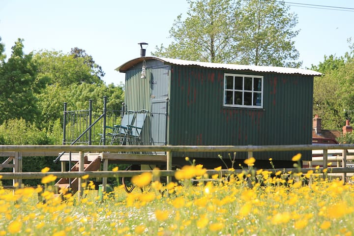 Mabel the Shepherds Hut