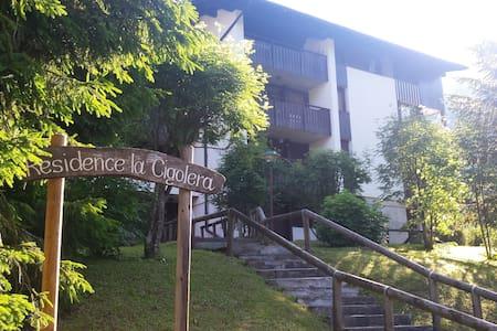 Megghy's dollhouse in  San Martino di Castrozza - Siror - Wohnung