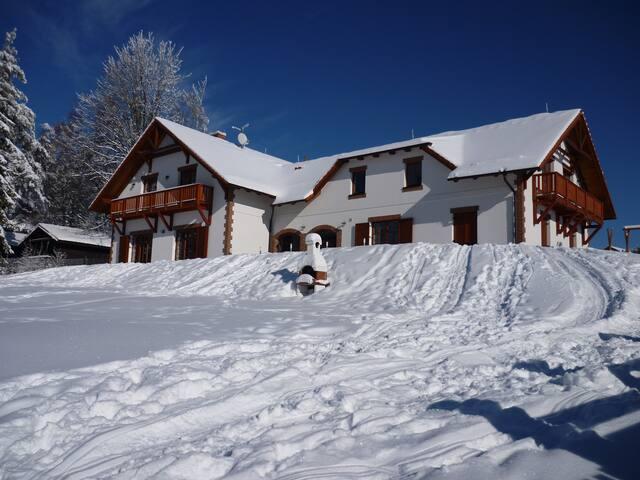 Villa Victoria near Lipno lake & ski areal Lipno