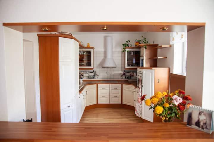 52qm-Wohnung mit Kamin und großer Küche