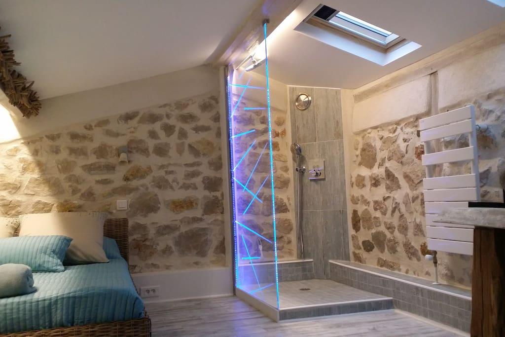 Douche, Toilette et lavabo en haut ( Duplex )