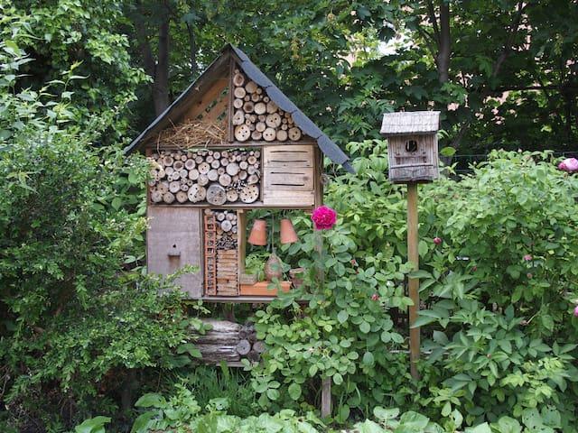 Chambre au calme dans le jardin... - Millau