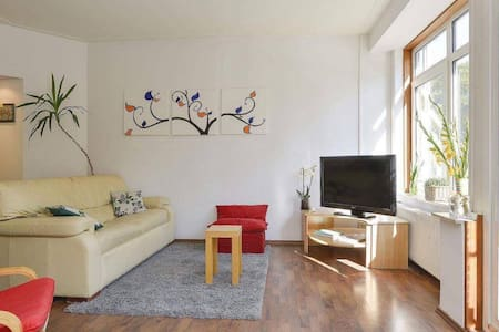Big COSY apartment with river view - Amsterdã