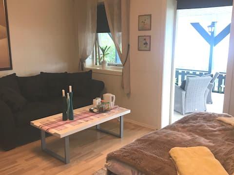 Stort rom med uteplass i et koselig privat hjem