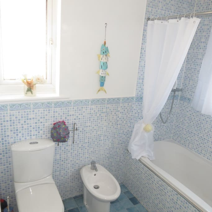 Shower over bath, bidet and toilet make up private bathroom.