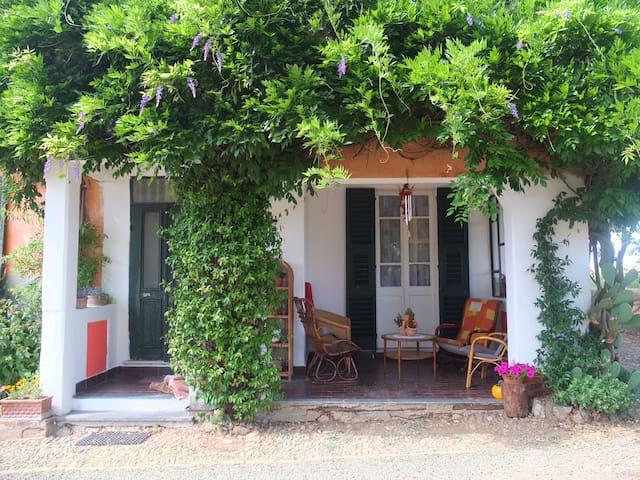 Cascina Baracico - Rocca Grimalda - House