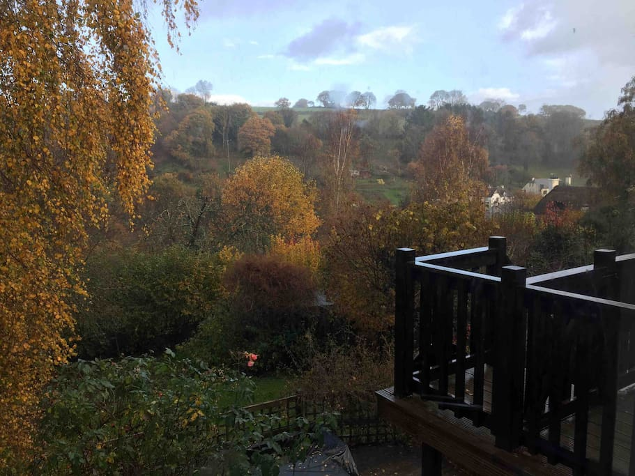 Autumn's morning view from the kitchen.