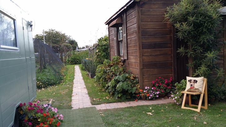 The Whare At The Berry Farm
