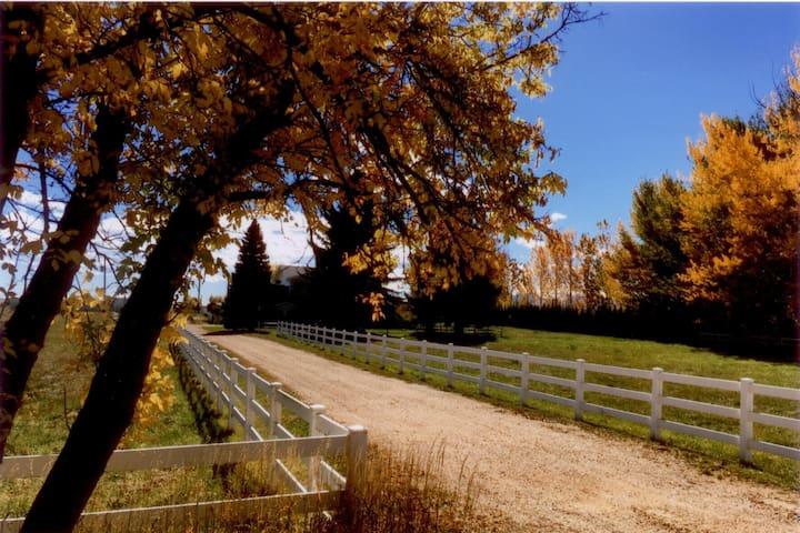 Rancho Via - Longmont - House