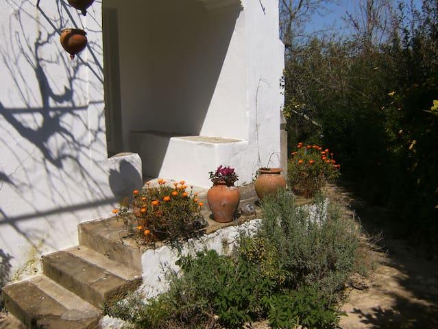 Casa Rústica em área protegida - Feliteira - Casa