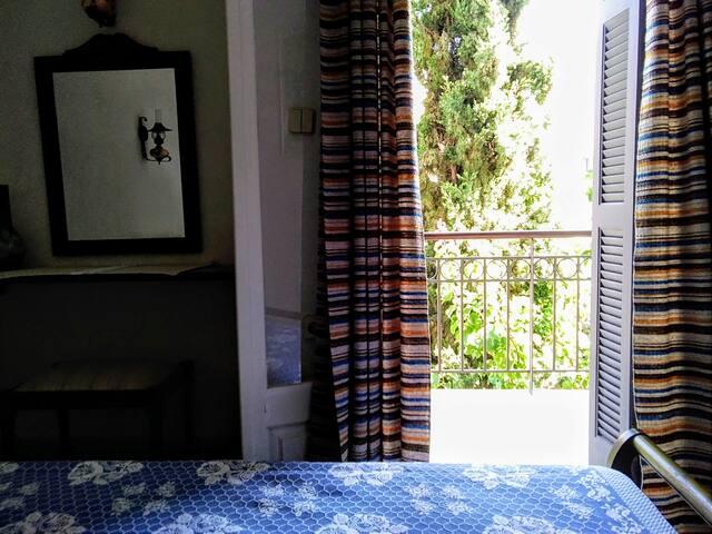 Θέα δωματίου,καταπράσινος κηπος