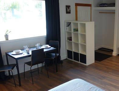 Private studio guest suite (skier/biker friendly)