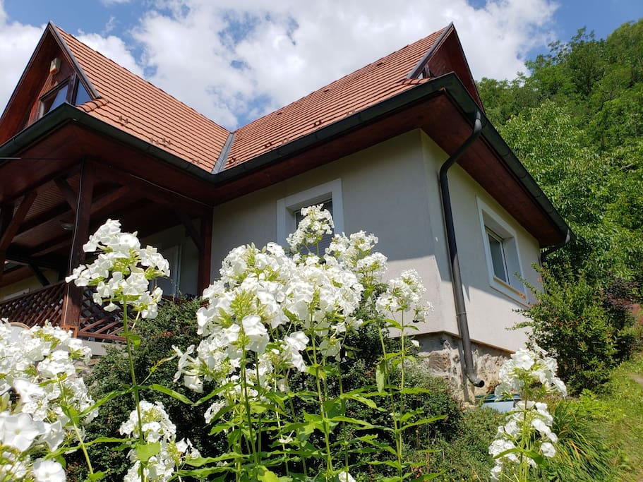 the style of the house reflects traditional paloc architecture