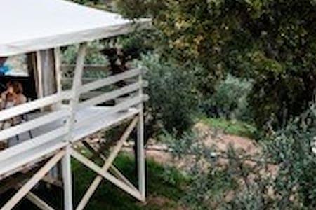 Le 20 migliori case sugli alberi in affitto a emilia - Airbnb casa sull albero ...