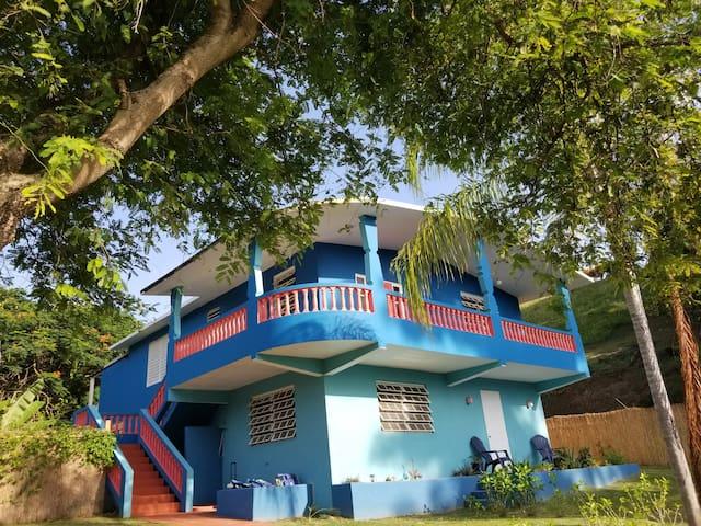 Casa de Coral Azul