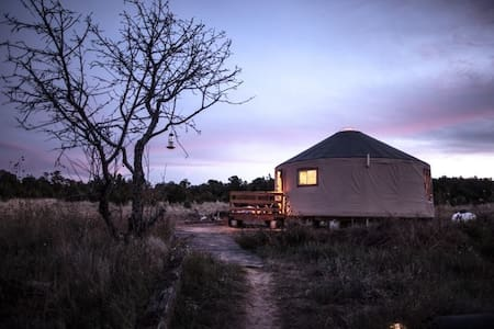 Luxury glamping in a yurt, pellet stove for winter - Edgewood