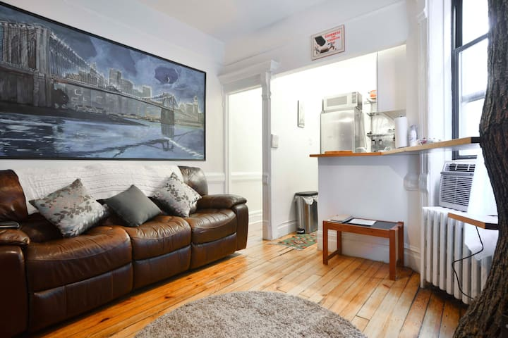 3 Bedroom In The Heart Of Manhattan Apartments For Rent