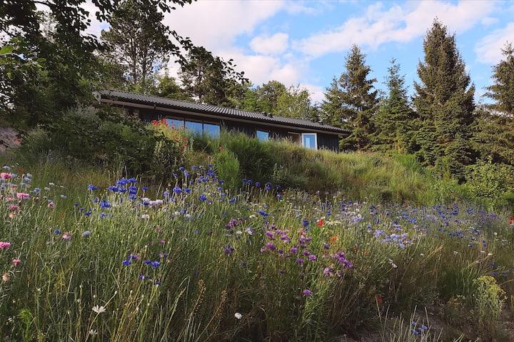 Nyt sommerhus med stor terrasse og skøn udsigt