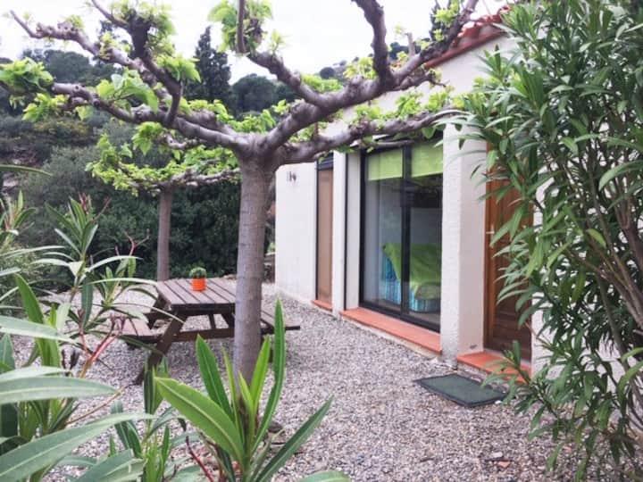 Port-Vendres/Collioure: maison dans les vignes