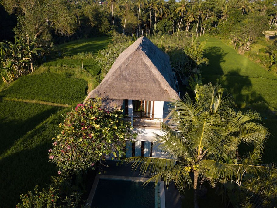 The villa - set amongst nature