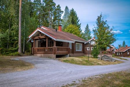 Villa Kurpitsa on Vesijärvi lake