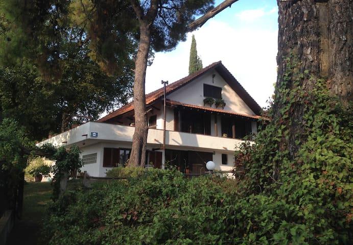 Wild Oaks Cottage sea view Retreat - Kriopigi - House