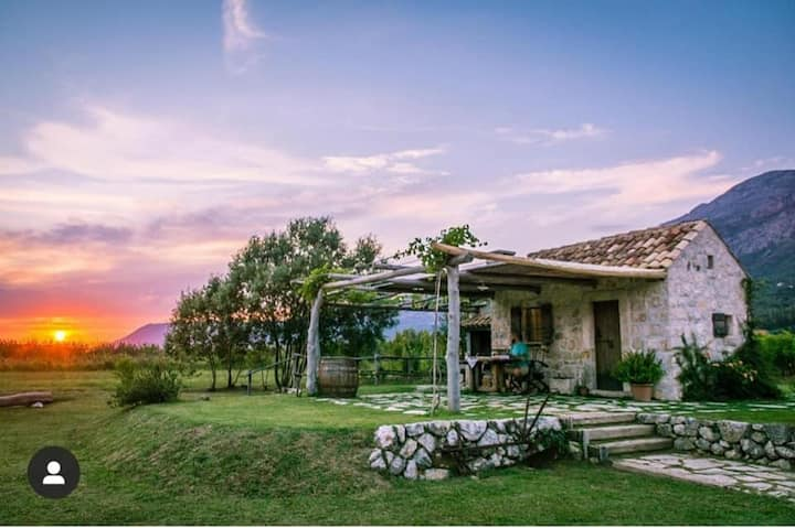 Vineyard Eco Cottage near Dubrovnik