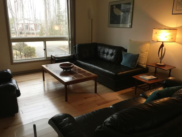 Comfy living room with leather furniture, Apple TV and picture window