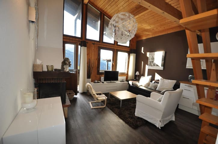 Nice 3 rooms renovated, beautiful view on the montain, near the skilift