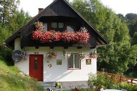 Casa tradizionale in Carinzia - Gallizien