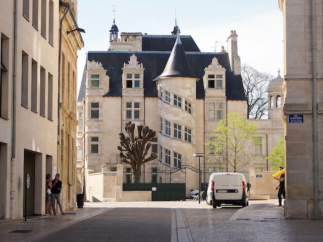 """La vie de château"" in Poitiers! - Poitiers - Apartamento"