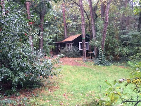 "Wooden cabin ""Het Boshuisje"""