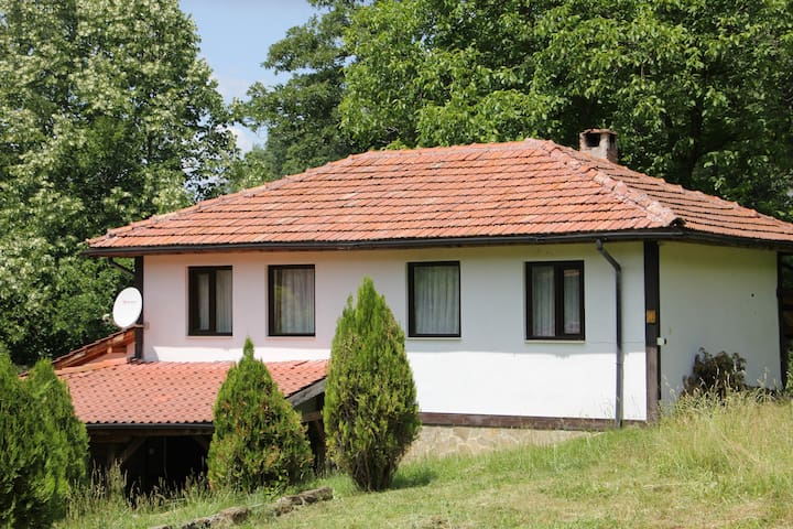Forest holiday house Boaza in Central Balkans
