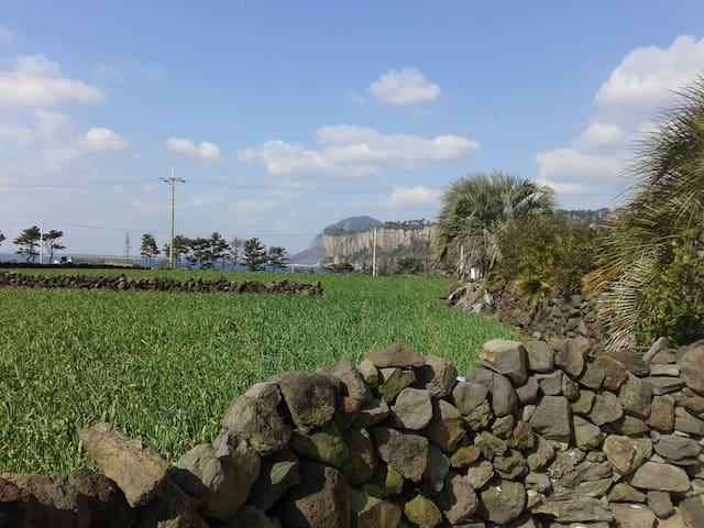 몽돌하우스
