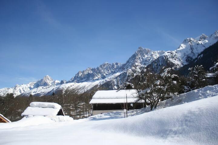 STUDIO avec Jardin, LES HOUCHES-Vallée de Chamonix