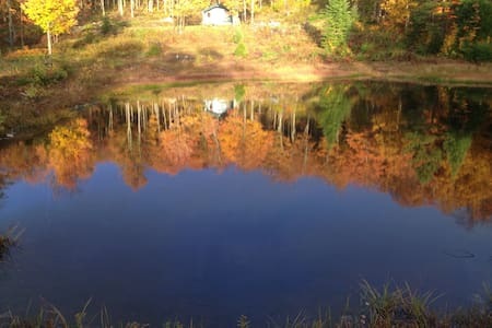 426 square foot cabin! Private! - Woodford - Cabana
