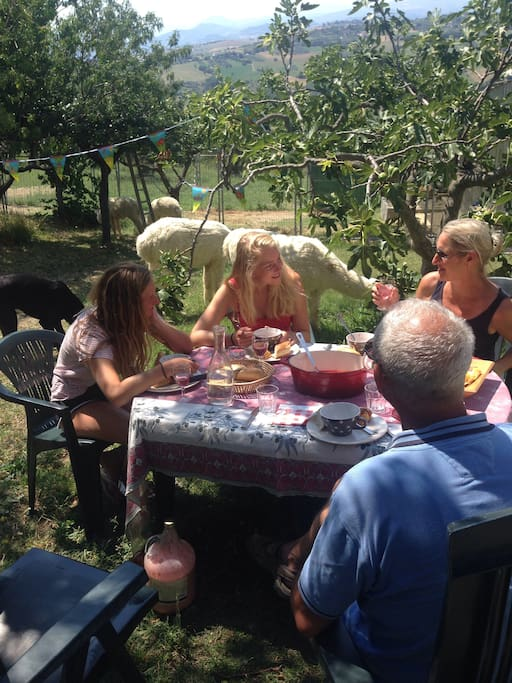 Picnic between the alpacas