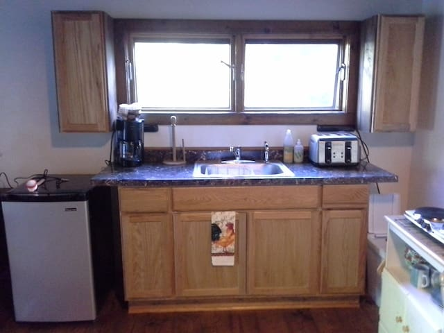 Kitchen with microwave, 2 burner hot plate, toaster, tea kettle,refrigerator, coffee maker & sink.